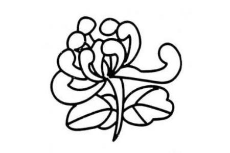 菊花花朵简笔画法