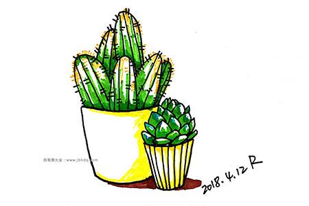 漂亮的小盆栽简笔画图片