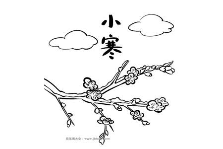 二十四节气小寒:梅花简笔画