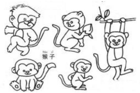 调皮的猴子