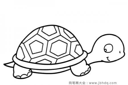 可爱的卡通乌龟