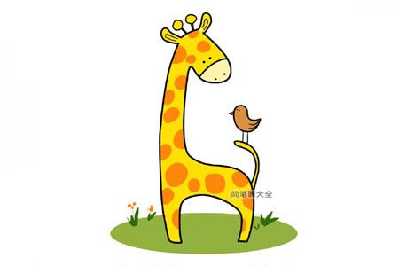长颈鹿和小鸟