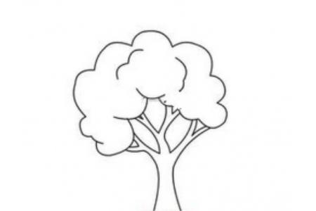 茂盛的大树简笔画图片