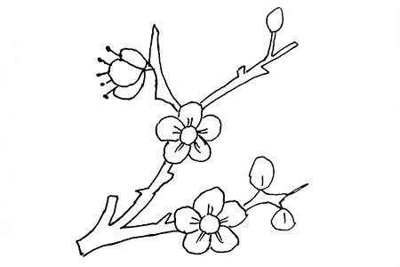 中国十大名花之首:梅花