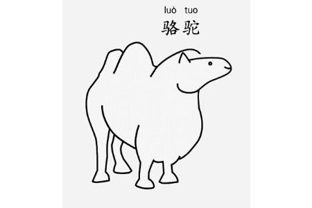 骆驼怎么画