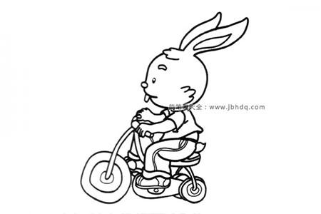骑车的小兔子