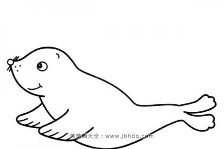可爱的小海豹简笔画图片