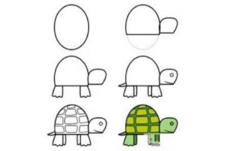 教你如何画小乌龟