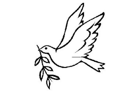 教你如何简单画和平鸽