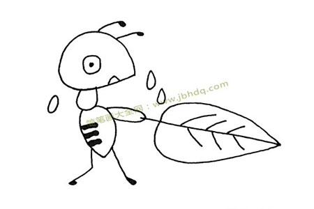 蚂蚁被热惨了