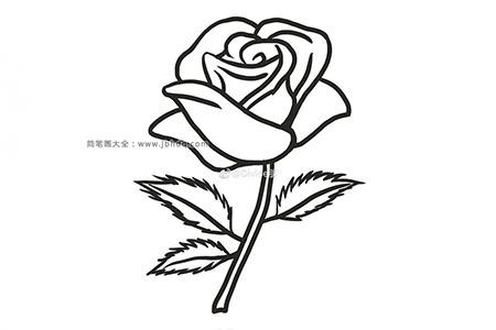 漂亮的红玫瑰简笔画