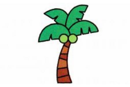 椰树的简笔画画法