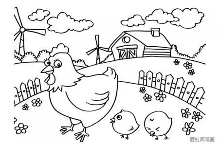 农场里的母鸡和小鸡