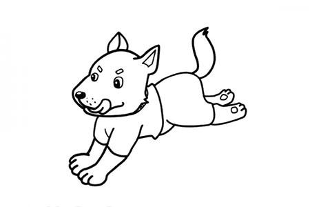 奔跑的小狼狗