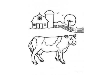农场里的奶牛简笔画图片