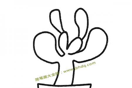 一组简单的多肉植物简笔画图片