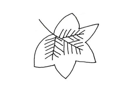 简单的植物简笔画 树叶简笔画图片