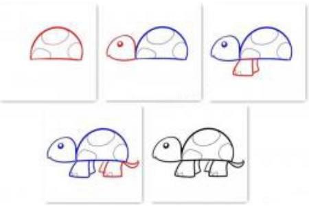 乌龟的画法