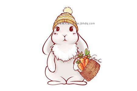 分步学画:提着胡萝卜的小白兔