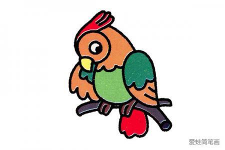四步学画小鹦鹉,简单又有趣