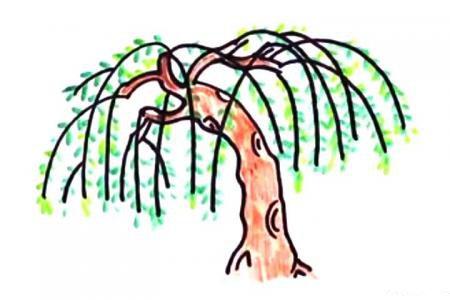 万条垂下绿丝绦 柳树简笔画教程