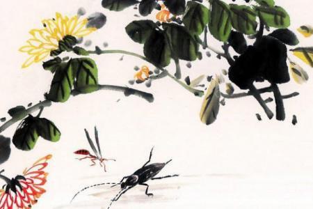 重阳节儿童画图片-重阳菊花洒满地