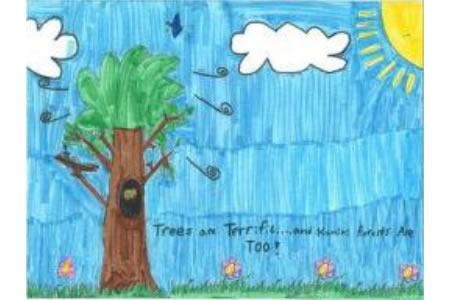大树朋友小学生植树节绘画图片大全