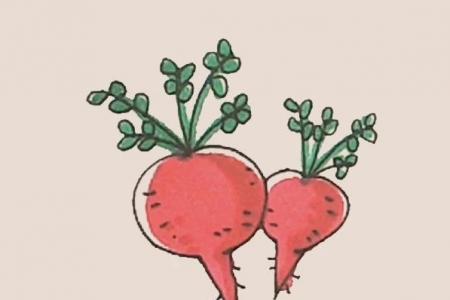 简笔画之大红萝卜