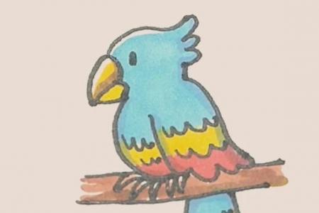 简笔画之鹦鹉