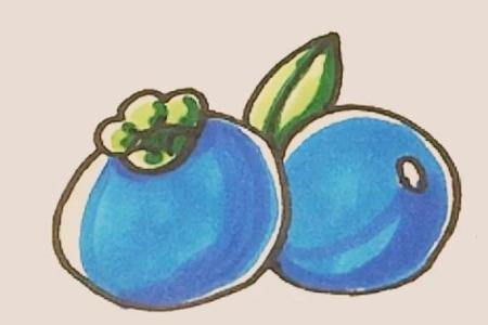 简笔画之蓝莓