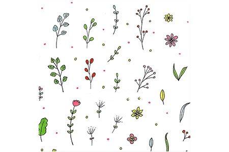 数十种花草植物简笔画手帐素材