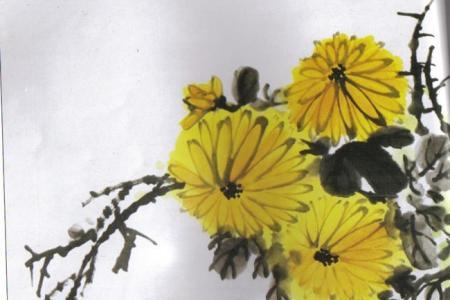 重阳节图片儿童画-菊花飘香