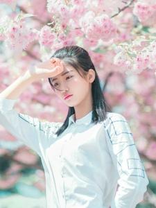 樱花树下眼镜少女甜美可人