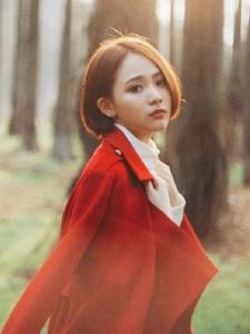 森林逆光下的红色靓影自然美丽