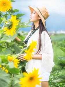 向日葵女神湖畔唯美浪漫写真