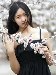 清秀白皙少女樱花树下的粉嫩迷人写真