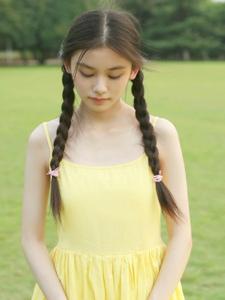 草地上的黃色靚麗連衣裙麻花辮姑娘美麗動人