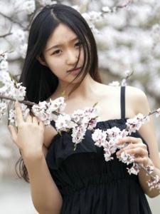 清秀白皙少女樱花树下的甜美写真