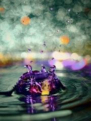 微距下的水滴