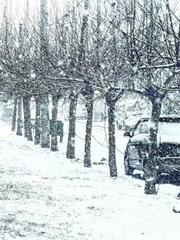 晚来的初雪