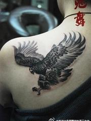 男子左后肩老鹰纹身图案