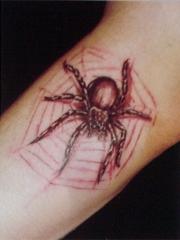 手臂艺术个性蜘蛛纹身图片