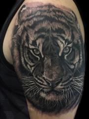 坚毅的强者,手臂写实虎头纹身