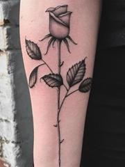 纹身玫瑰花纹身图案来自乔丹·霍伯