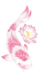 粉色莲花绕鲤鱼刺青图片