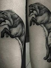腿上的黑灰色站立的狐狸纹身图片