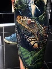 小腿上的逼真的写实风格丛林中的鬣蜥蜴纹身图片