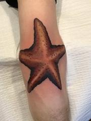 手臂肘部上的大海星纹身