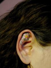 耳朵彩绘清爽樱花刺青图片