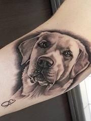 9款可爱的拉布拉多犬宠物狗纹身小动物纹身图案